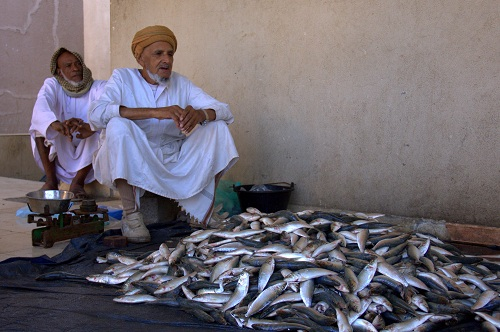 Oman travel, things to do in oman, Oman travel tips, Oman travel guide