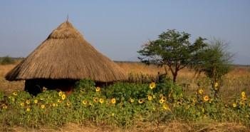 traveling to africa, africa travel, travel to africa, travel africa, reasons to travel to africa