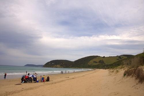 The Great Ocean Road, Great Ocean Road, Australia Great Ocean Road, Australia Travel, Twelve Apostles, koalas, London Bridge, London Arch, Lord Ard Gorge