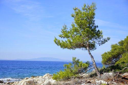 rab island, island rab, island of rab, rab island croatia