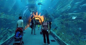 dubai aquarium, dubai mall aquarium, dubai top attractions