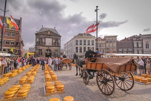 Things to do in Holland, Holland travel