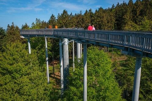 Waldwipfelweg Germany, Sky Walks in Germany, Germany travel