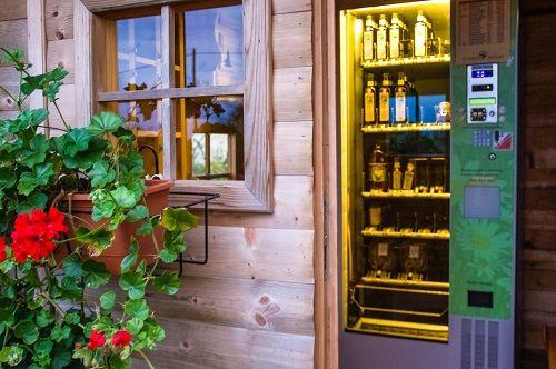 organic farm Trnulja, bio hotels trnulja, eco farm trnulja, hemp farm slovenia