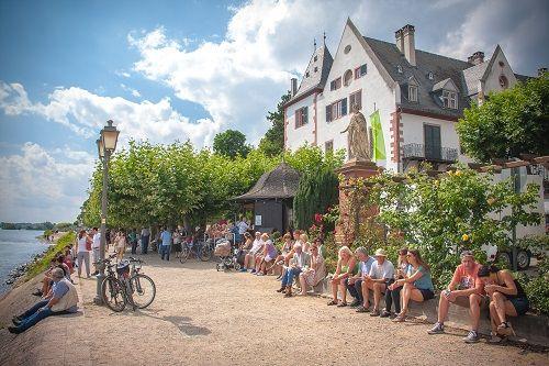 Rheingau Germany, Rheingau travel blog, Germany travel