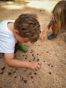Nature play for kids